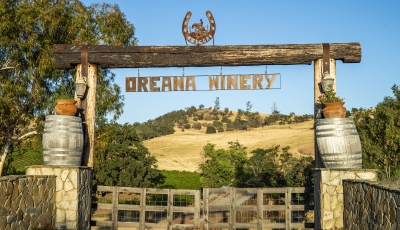 Oreana Winery and Vineyards 3D Model
